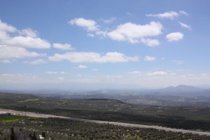 Baeza: Olivenbäume, soweit das Auge reicht